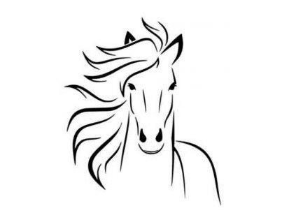 Hlava koně - plastová šablona 003
