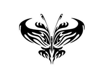 Motýl - plastová šablona 160