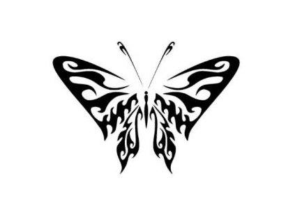 Motýl - plastová šablona 163