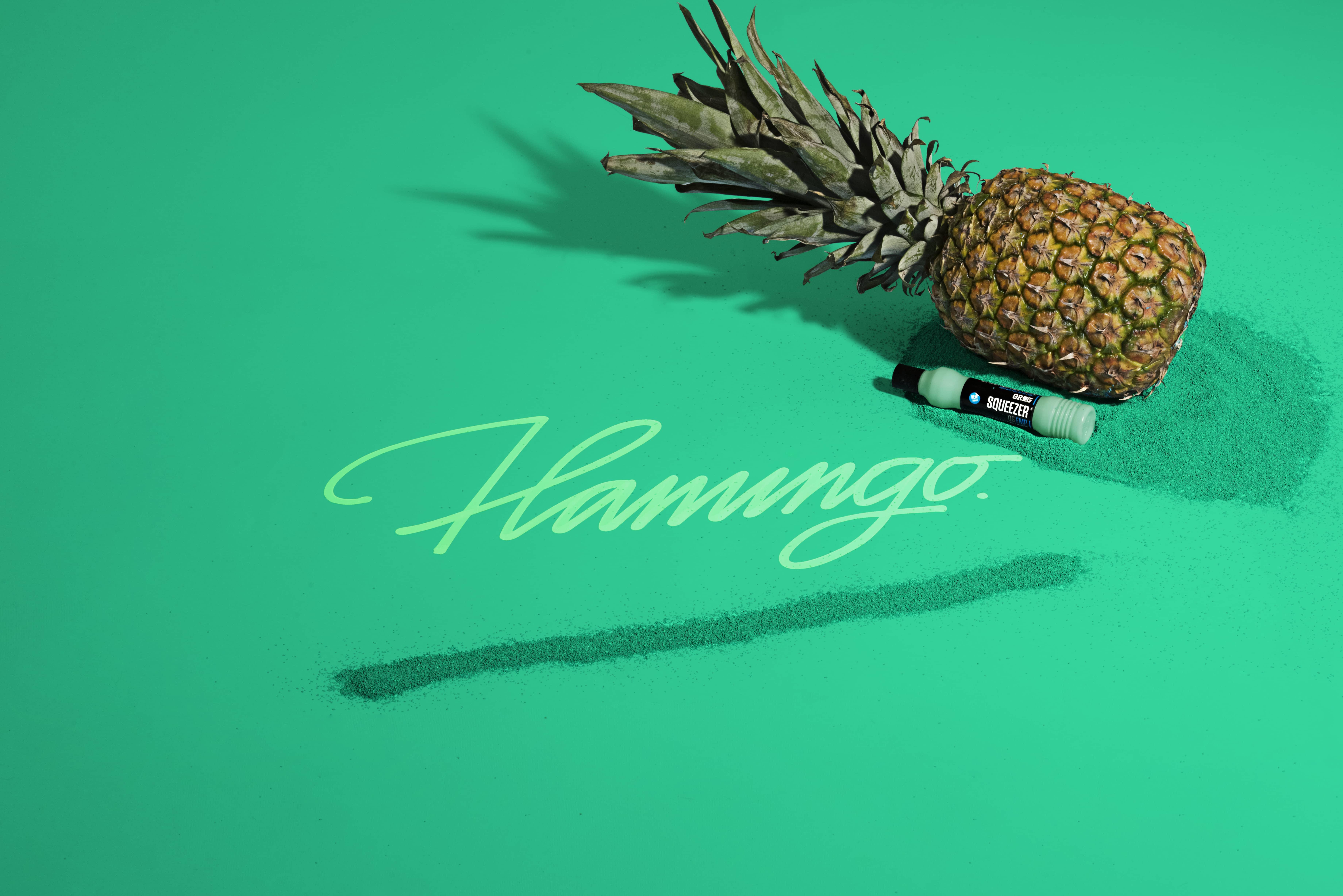 DSC_5897_flamingo