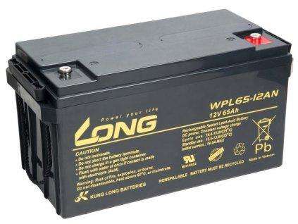 LONG baterie 12V 65Ah M6 LongLife 12 let (WPL65-12AN)