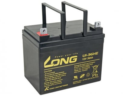 LONG baterie 12V 36Ah F4 DeepCycle (U1-36HE)