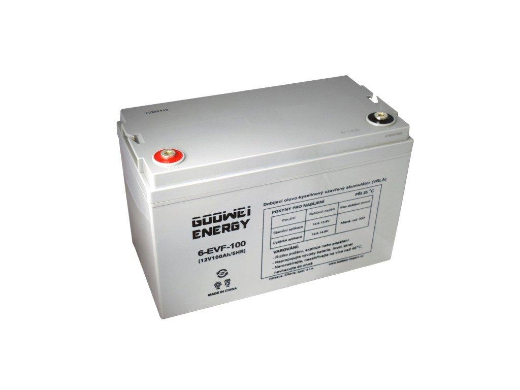 Trakční (GEL) baterie GOOWEI ENERGY - ELECTRIC VEHICLE 6-EVF-100, 100Ah, 12V