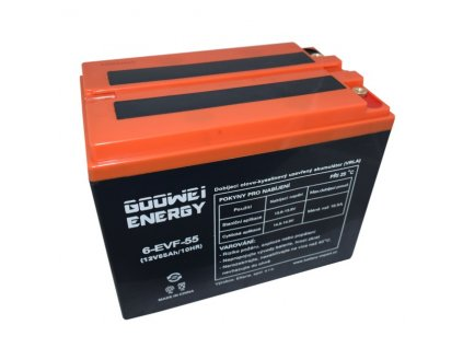 Trakční (GEL) baterie GOOWEI ENERGY - ELECTRIC VEHICLE 6-EVF-55, 55Ah, 12V