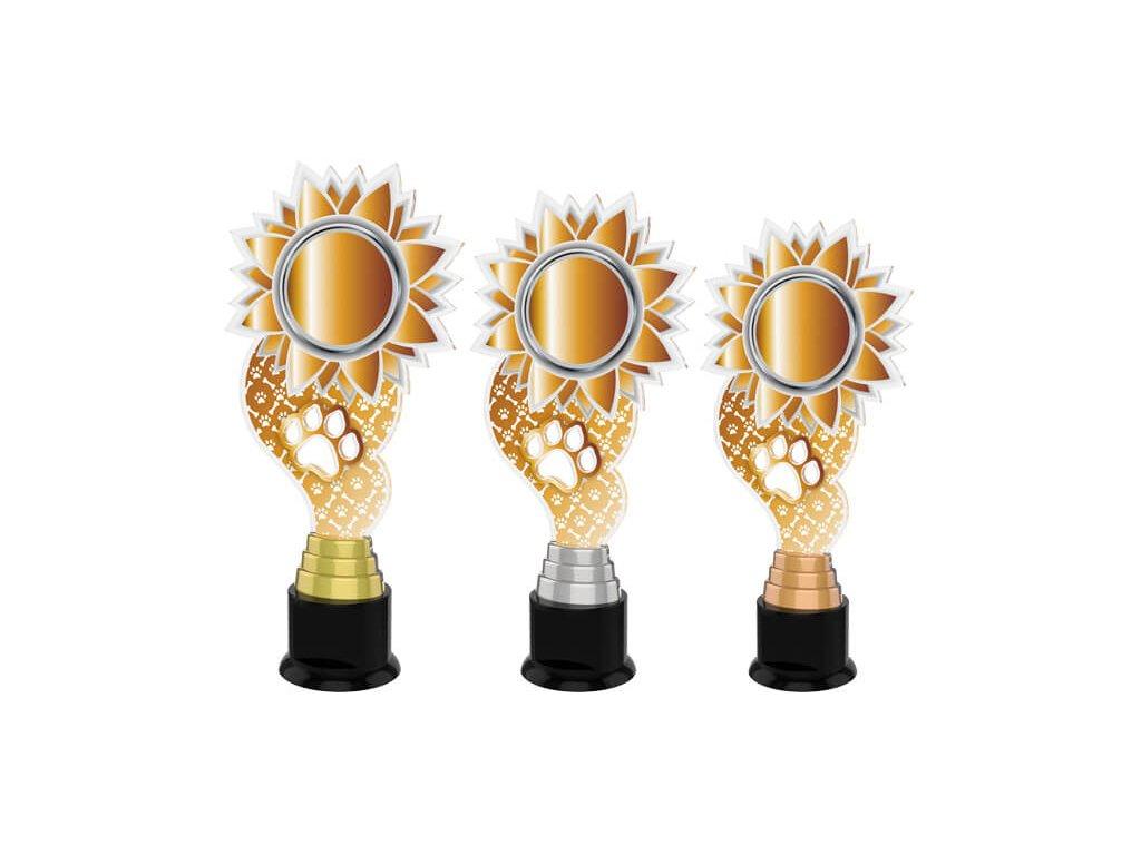 Acrylic trophy ACTKC0016