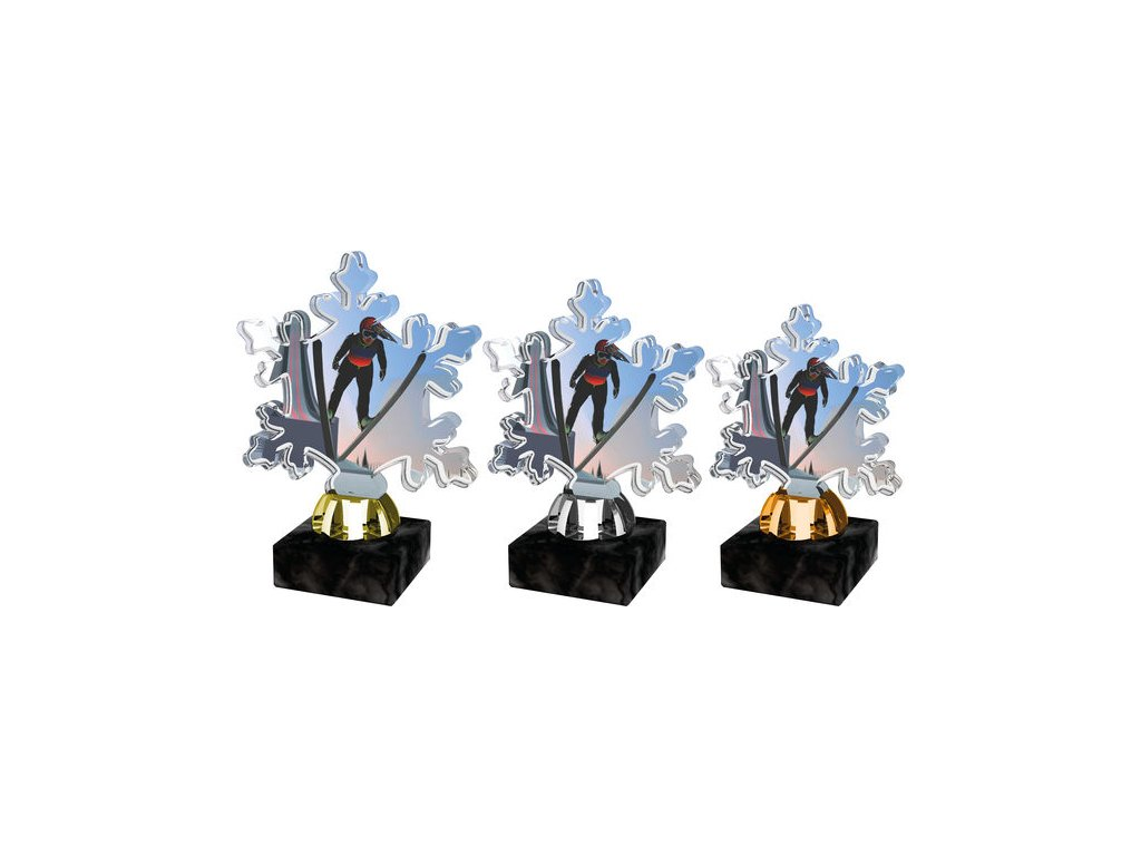 Acrylic trophy ACTS0001M9