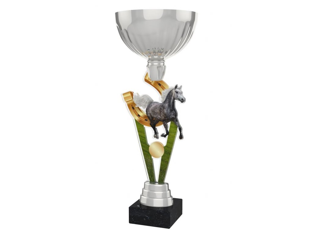 Acrylic trophy ACUPSILVM11