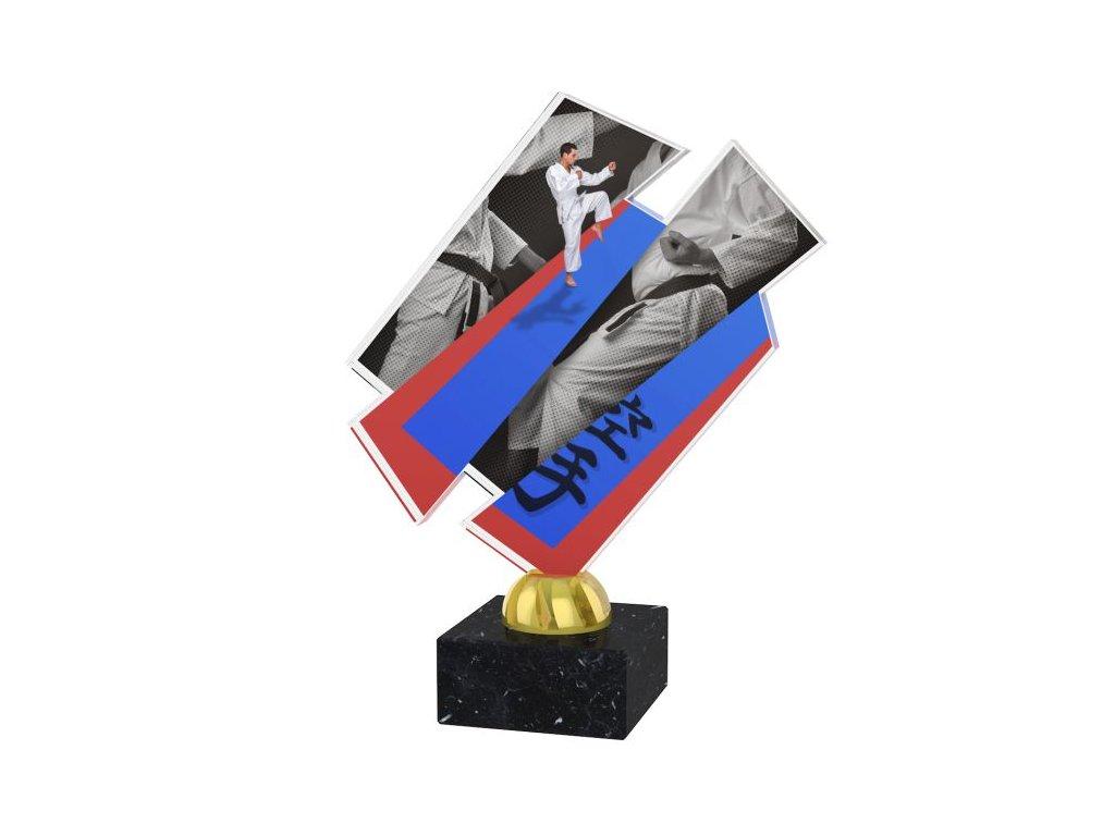 Acrylic trophy ACZM34