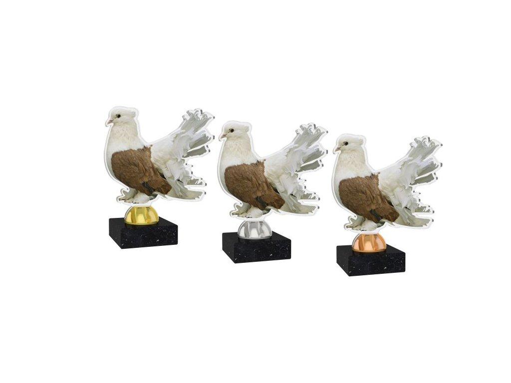Acrylic trophy AKEB02M5