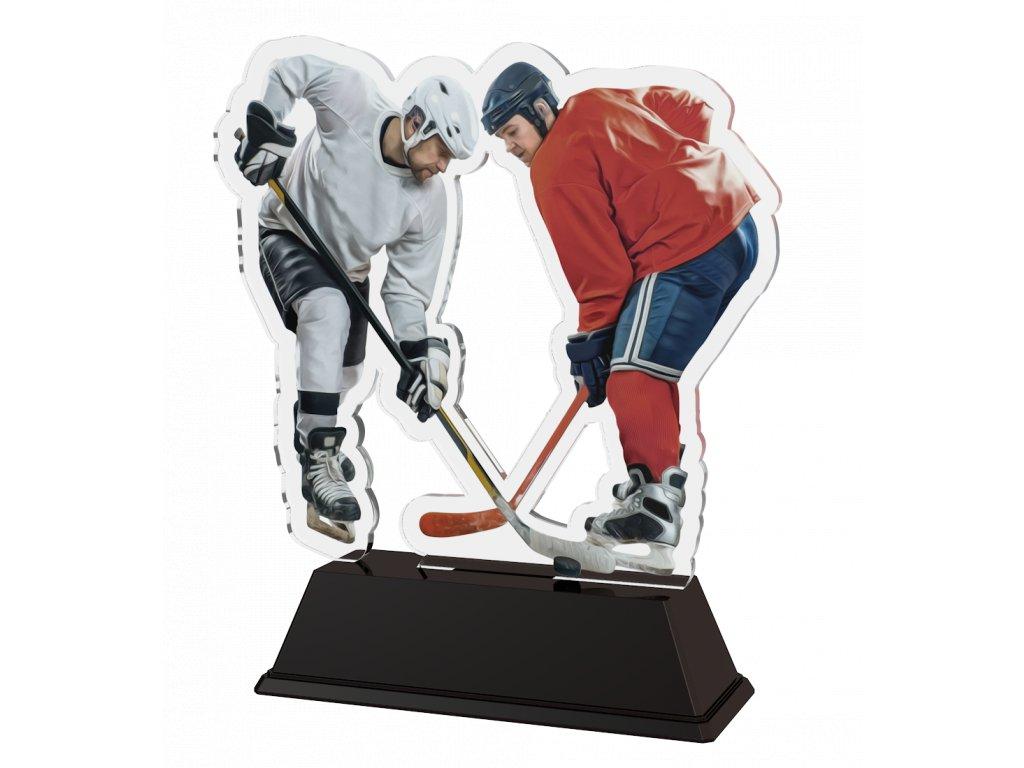 FAZ1 Hokej8