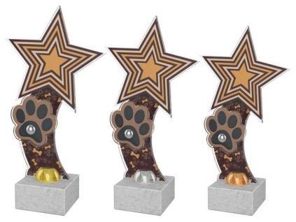 Acrylic  trophy ACTD101
