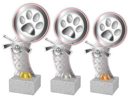 Acrylic  trophy ACTD104