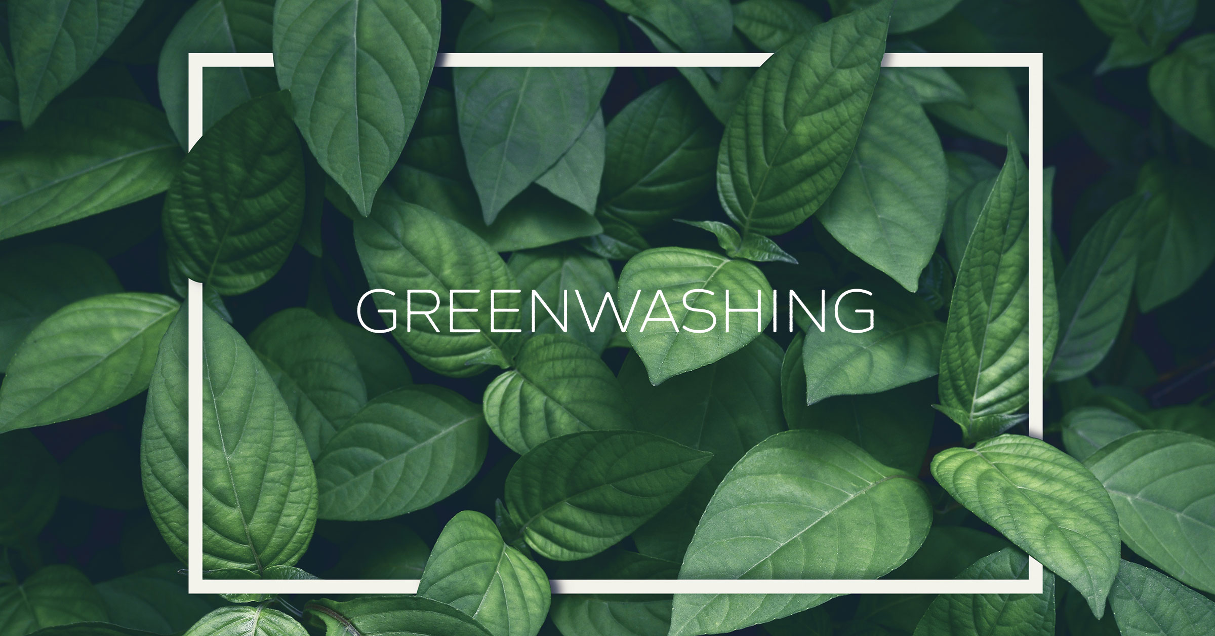 """Greenwashing, když není všechno """"zelené"""" udržitelné"""