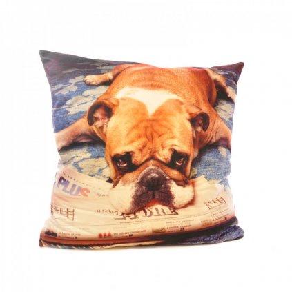 Polštář 3 D 45 x 45 cm motiv pes