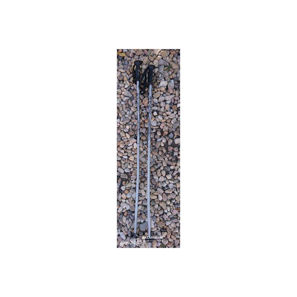Lyžařské hůlky Fizan