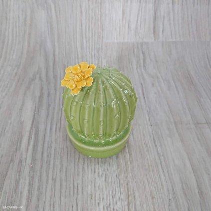 Dekorativní kaktus Flower Round Kare Des