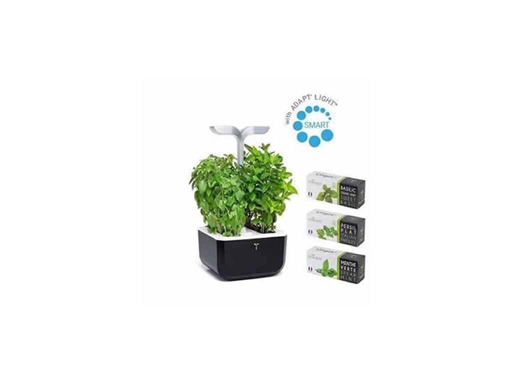 Chytrý květináč Véritable® Exky SMART, černý + 3 lingoty (petržel, bazalka, máta)