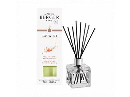 BERGER Exqusite Sparkle / Intenzivní třpyt difuzér kostka 125ml