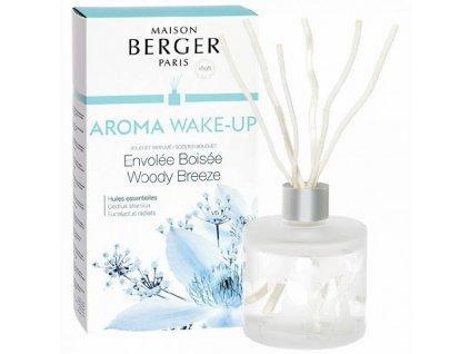 BERGER C22020 Lesní vánek Aroma Wake-up flakon s difuzérem 180ml