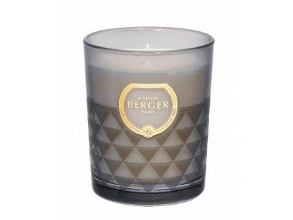 BERGER C12020 Clarity svíčka šedá Čerstvé dřevo 180g