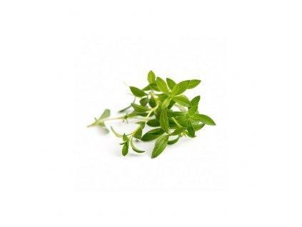 Lingot s BIO semeny saturejky divoké pro chytré květináče Véritable
