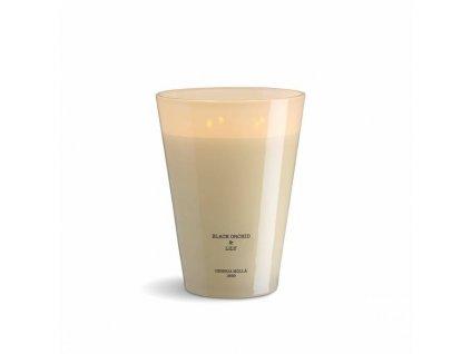 Vonná svíčka se 4 knoty Cereria Mollá Raspberry & Black Vanilla, 3500 g