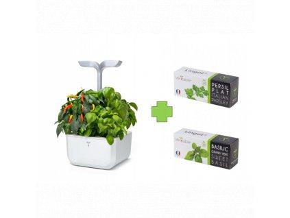 Chytrý květináč Véritable® Exky SMART, bílý + 2 lingoty (petržel, bazalka)