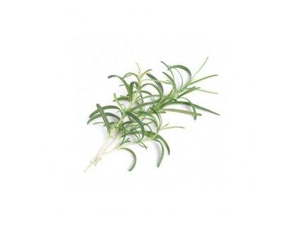 Lingot se semeny rozmarýnu pro chytré květináče Véritable