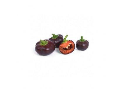 Lingot se semeny čokoládových minipapriček pro chytré květináče Véritable