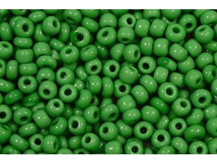 Seed beads 6/0+7/0 53250