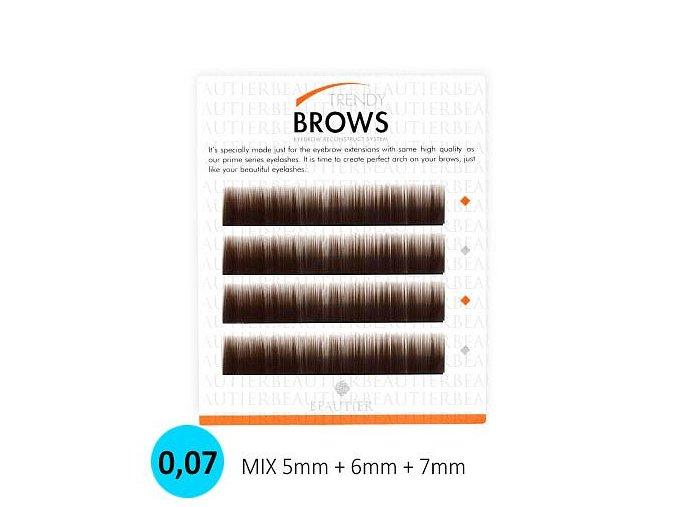TRENDY BROWS- SADA NA TVAROVÁNÍ OBOČÍ (Odstín BLACK)