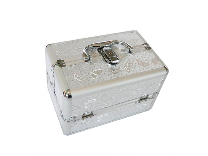 Small Silver Butterfly Beauty Case