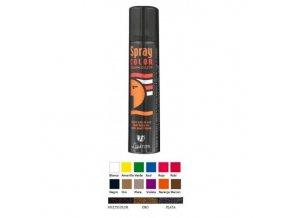 BAREVNÝ SPREJ na vlasy a tělo (12 barev) (Odstín ČERNÁ)