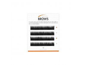 TRENDY BROWS- SADA NA TVAROVÁNÍ OBOČÍ (Odstín BROWN)