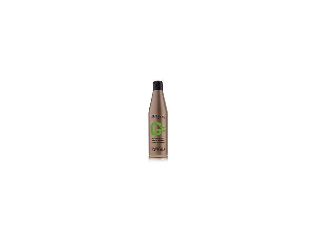 Salerm Šampón na mastné vlasy 250 ml