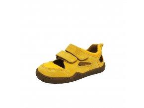 Kammmolch STRAP yellow