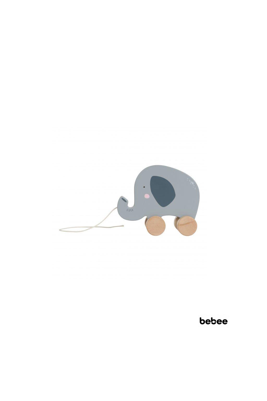 tahaci slon Little Dutch