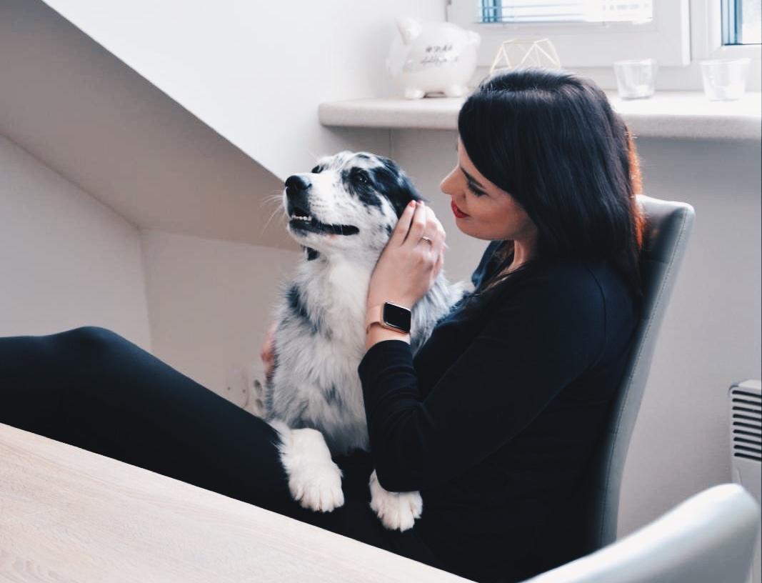 6 důvodů, proč si pořídit psa