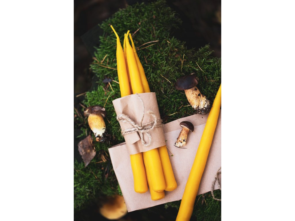 Kónická svíce ze včelího vosku  Vysoká svíčka z včelího vosku
