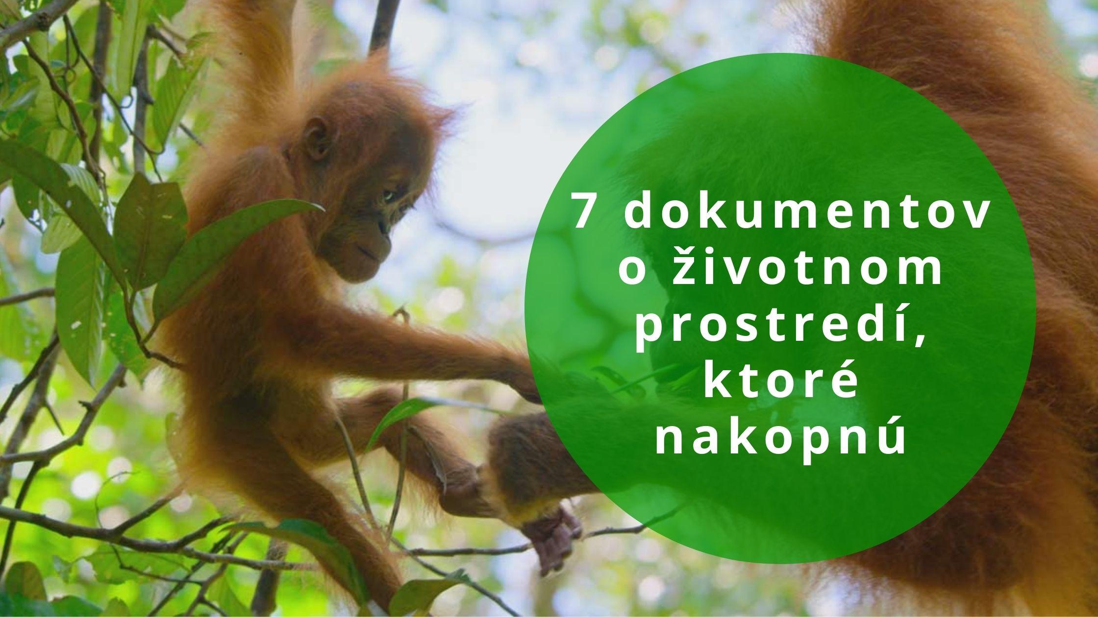7 dokumentov o životnom prostredí, ktoré nakopnú