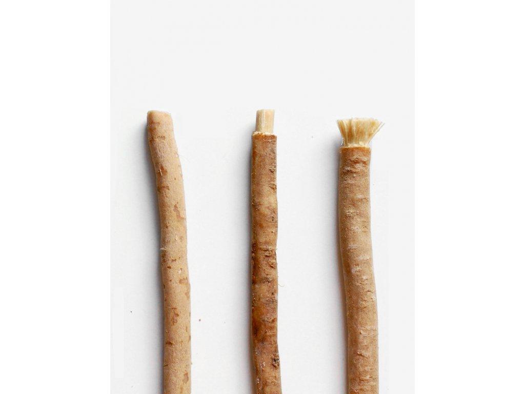Prírodná zubná kefka (Salvadora perská)