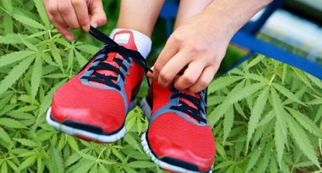 Pozitivní účinky marihuany pro běžce