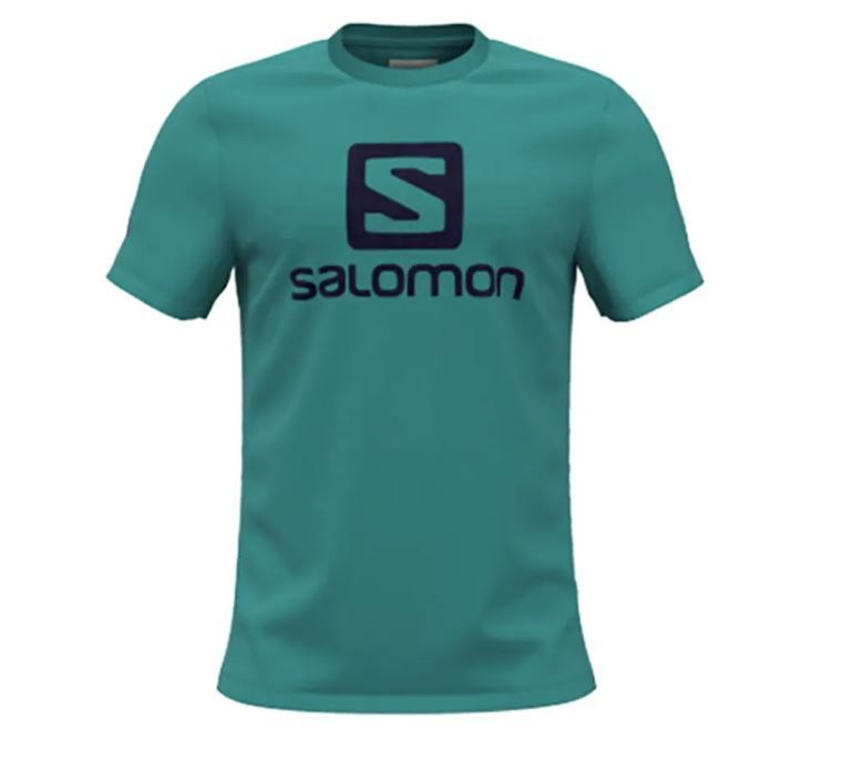 Salomon tričko Outlife Logo SS Tee M Baltic baltic aspr Velikost: L