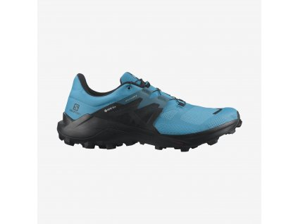 Salomon obuv Wildcross 2 Gtx reef blac blue