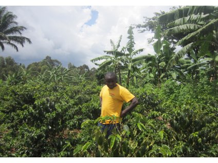 Arabica farmer Uganda rwenzori by dailycoffeenews