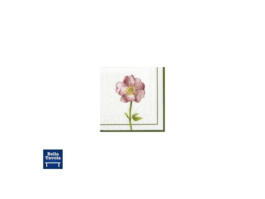 13989 flora