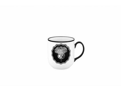 26421 vista alegre hrncek white herbariare