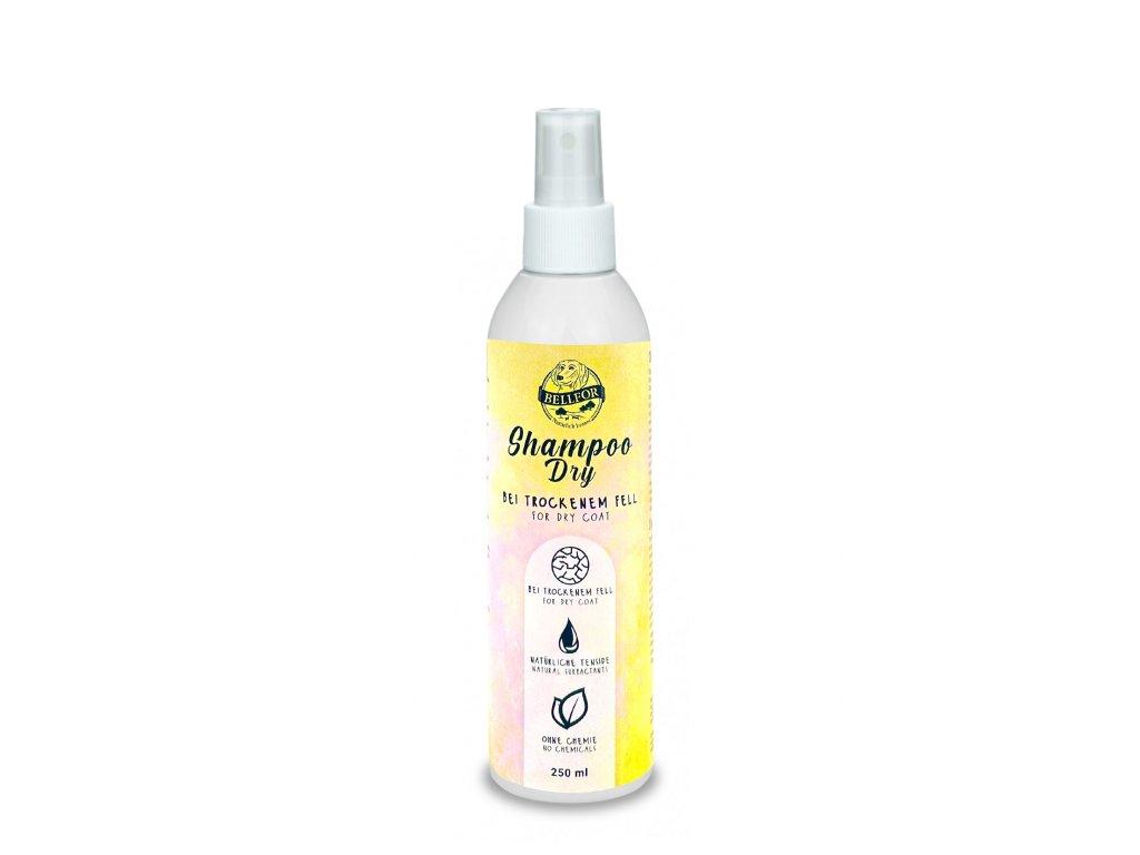 shampoo dry 250ml 1650x1650
