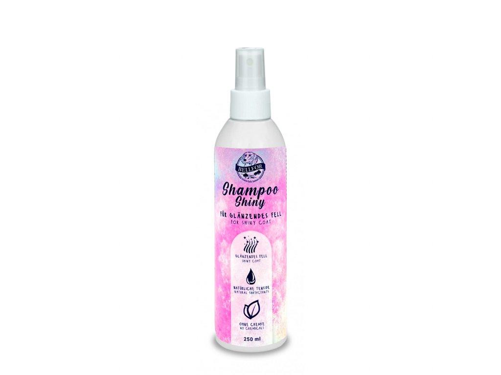 shiny shampoo 250ml 1650x1650