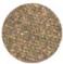 D20-L stardust brow